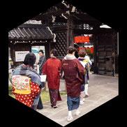 きもので桜の赤坂巡り