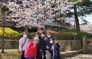 和田山でお花見