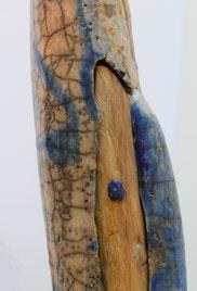 Anguillam hyacintho (2013)