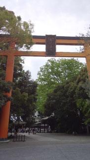 法事のため川越へ。写真は川越氷川神社です。