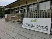 橋を渡り五日市街道を超えると小金井公園、中を進むと江戸東京たてもの園です