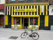 Coffee Shop Mellow Yellow