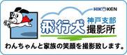 飛行犬撮影所 神戸支部