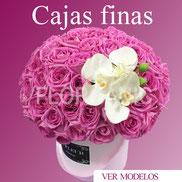Envía Flores Regalos Y Globos A Domicilio Florganic