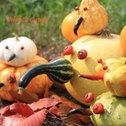 ハロウィン特集・重ねて楽しむおもちゃかぼちゃ