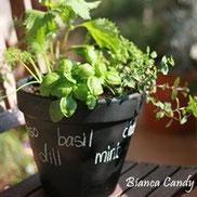 黒板用スプレーで植木鉢をリメイク