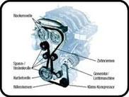 Schematische Darstellung des Zahnriemens am Motor