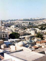 Jerusalem terrasse view . Nehama's Harp  August 1991