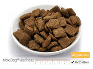MaxiDog® Wellness - Das ideale Futter für den athletischen Hund, der Rind und Getreide nicht verträgt