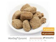 MaxiDog® Dynamic - Für den dynamischen Hund, der Getreide und Pseudogetreide nicht verträgt