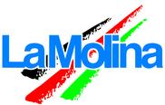 Esquí alpí La Molina