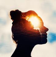 Studien über das Bewusstsein