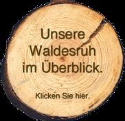 Übersichtsplan Hotel Waldesruh bei Bad Bevensen