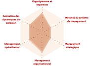 le diagnostic organisationnel permet une évaluation de processus.