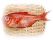 魚:馬乃屋こだわり