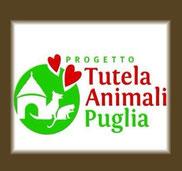 Tierschutz Apulien