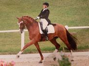 Ausbildung Weiterbildung Pferd Beritt Bern Solotnurn Dressur Longieren
