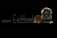 Eichbüel