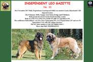 Leo Gazette