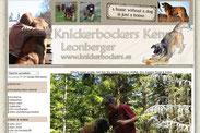 Knickerbockers - Jemba