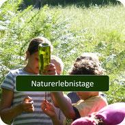 Naturführung für Familien auf Rügen