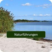 Naturführung auf Rügen