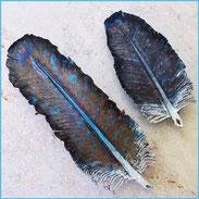 Zwei Lederfedern, große Haarspangen, punziert und koloriert, dunkelblau bis weiß, pflanzlich gegerbtes Leder