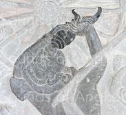 7. Cette conque à usage militaire, soufflée vers le haut, est l'une des plus belles qu'il soit donné de voir. Angkor Vat, Combat des Asura et des Deva. XIIe s.