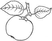NABU Apfel