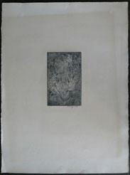 """Mark Tobey, """"Magic Forest"""", Kaltnadelradierung, H.C., handsigniert, 24,0 x 15,5 , € 400,00"""