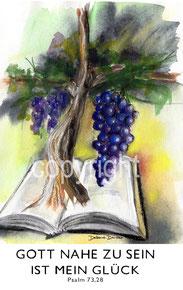 Weinrebe, Bibel