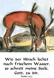 Hirsch der Wasser sucht