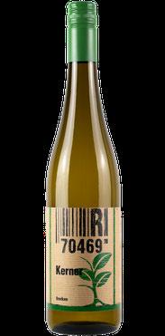 Flasche vom Kerner Wein in den Stuttgarter Weinbergen