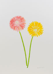 「Bloom today 023」 220x270mm 2021年