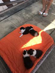 das erste Mal draußen auf der Terrasse.....