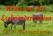 eselwandern-eifel-bongard-film-teil-05