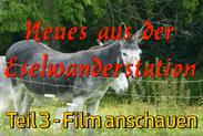 eselwandern-eifel-bongard-film-teil-03