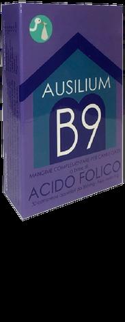 Ausilium B9