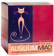 Ausilium Miao