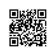 Version 3 : 29×29, 35-77 caractères