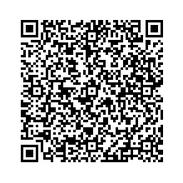 Version 10 : 57×57, 174-395 caractères