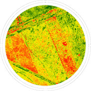 Agricultural surveys can collect data to analyse plant health or numbers, manage fertilizers or irrigation.