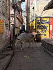 die engen Gassen von Varanasi