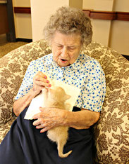 elderly memory care center kittens Stephanie Bouchard Best Friends Animal Society