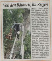 Bericht von 2010 ©Ostseezeitung