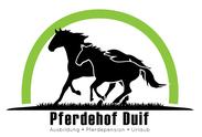 Pferdehof Duif Pferdepension Stall frei Brandeburg Berlin Neustadt Dosse