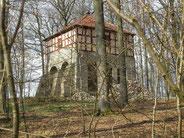 Wasserturm im Wald der Eremitage