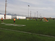 サッカーショーケース 大学サッカーセレクション 男子サッカー留学