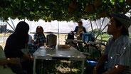 2017年9月 梨の収穫体験&交流会