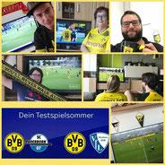 Testspiel, BVB - SC Paderborn, 1:1, BVB-VFL Bochum, 1:3